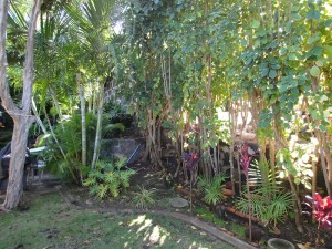 Malini garden-sm
